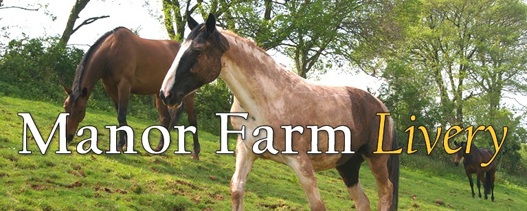 Manor Farm Livery, Broomfield, Somerset